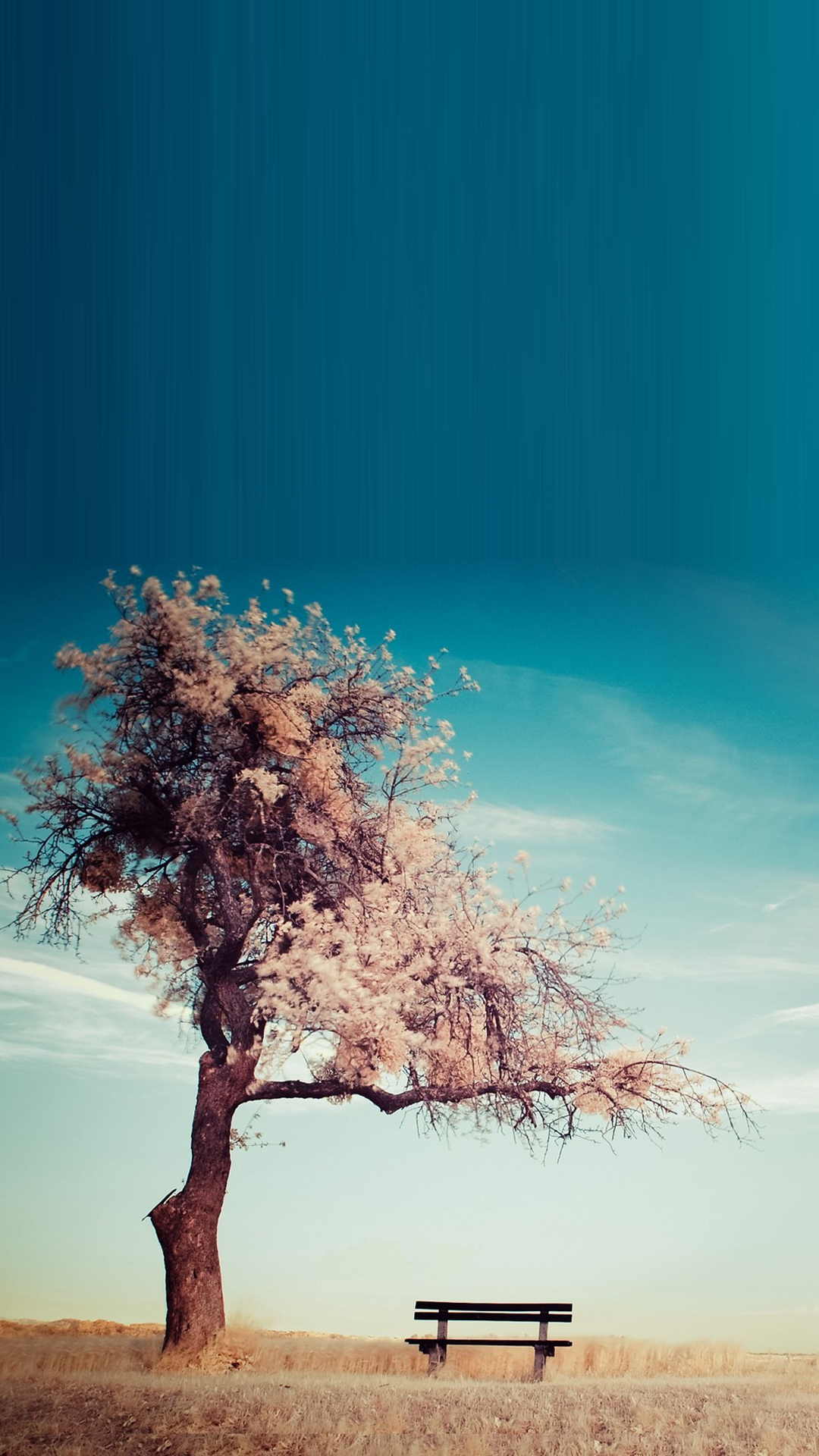 Tree Bench Smartphone HD Wallpapers