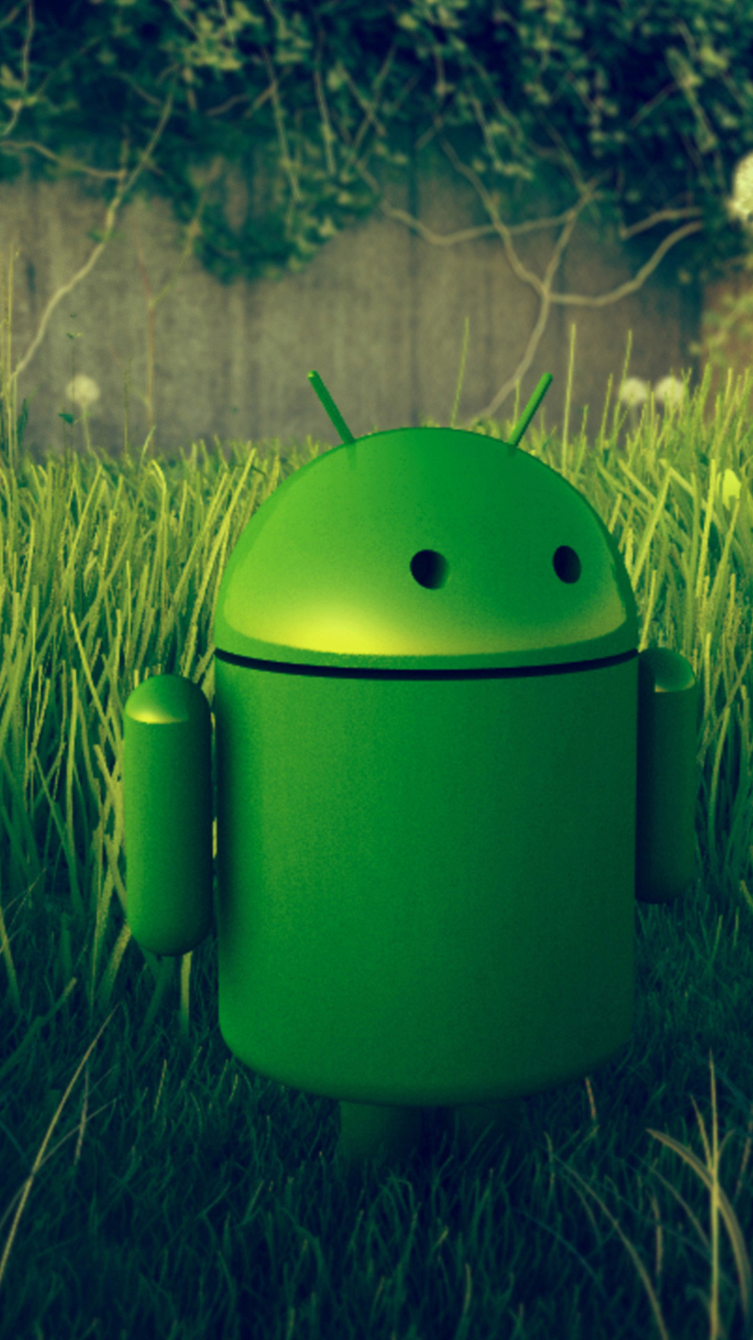 Android Grass Smartphone Wallpapers HD